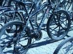 Vélo-Copenhague-10